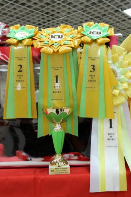 На февральской Международной выставке кошек (ICU), наш Юпитер победил в монопородном ринге, 2-е место заняла Феррари и 3-е место досталось Иветт! Юпитер стал лучшим и в ринге табби окрасов! Закрыл титул Большого Международного Чемпиона!!!