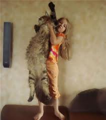 girl with coon